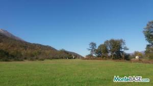 Ферма в Черногории Даниловград - поместье сельскохозяйственного назначения AS01736_1.jpg