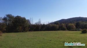 Ферма в Черногории Даниловград - поместье сельскохозяйственного назначения AS01736_2.jpg