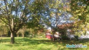 Ферма в Черногории Даниловград - поместье сельскохозяйственного назначения AS01736_3.jpg