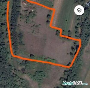 Ферма в Черногории Даниловград - поместье сельскохозяйственного назначения AS01736_4.jpg