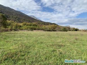 Ферма в Черногории Даниловград - поместье сельскохозяйственного назначения AS01736_5.JPG