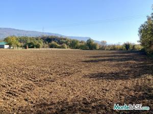 Земельный участок для сельского хозяйства MB05369_2.JPG