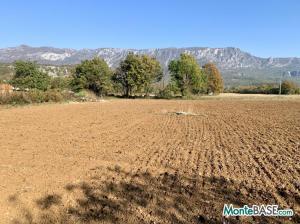 Земельный участок для сельского хозяйства MB05369_3.JPG