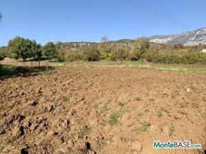 Участок земли для фермерского хозяйства MB05370_3.JPG